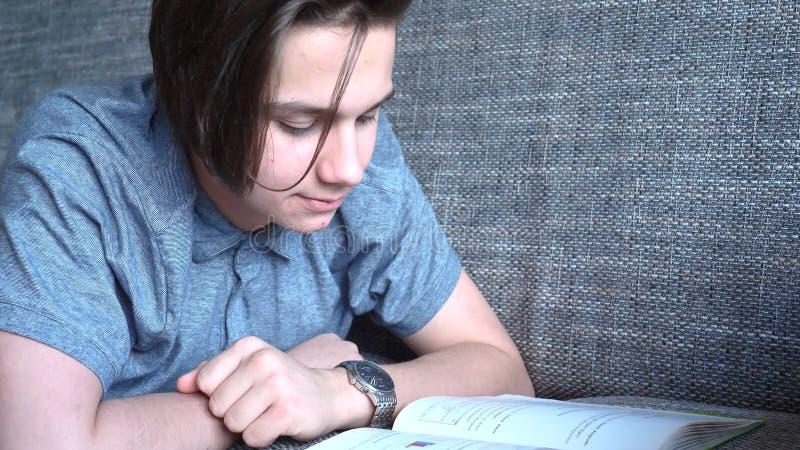 一个英俊的男孩少年在一个灰色沙发,棕色眼睛读一本书 免版税库存照片
