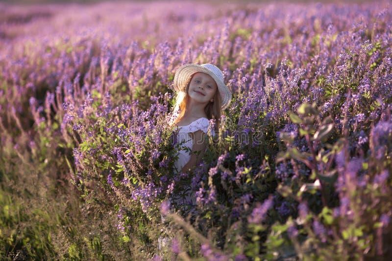 一个草帽的俏丽的女孩在淡紫色领域 有长发的美女在花田 免版税库存图片