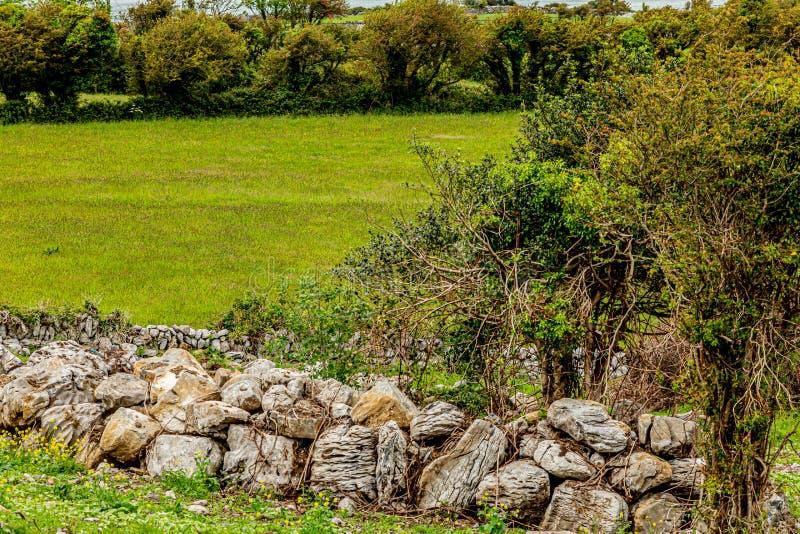 一个草甸的美丽的景色有石灰石岩石和绿草篱芭的  库存图片