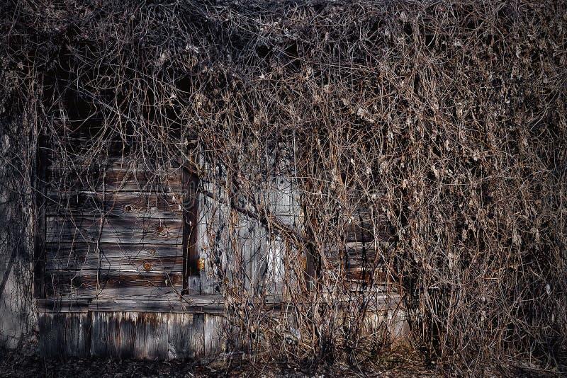 一个被放弃的房子的窗口 库存照片