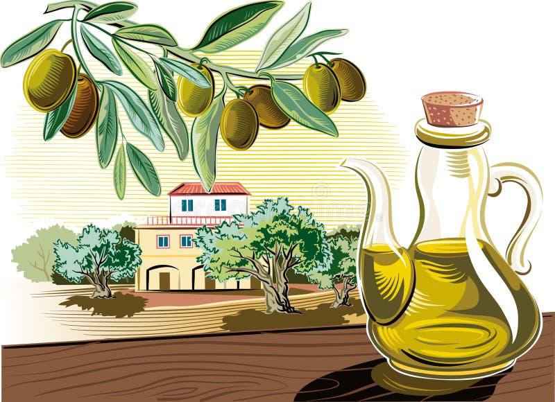 一个调味瓶的小树枝有橄榄油和橄榄油的 皇族释放例证