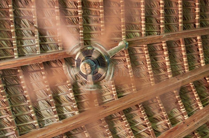 一个转动的爱好者在一个柳条屋顶的背景中 免版税图库摄影
