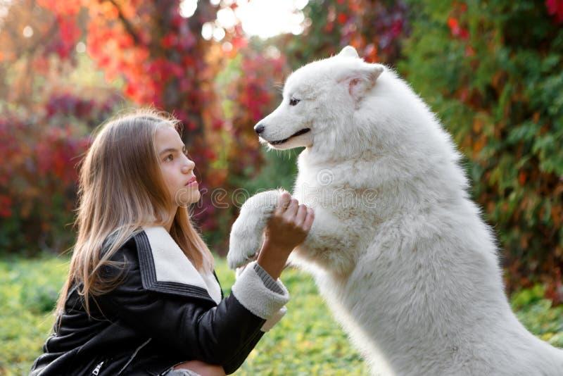 一个逗人喜爱的小孩、一个婴孩或者小孩女孩的室外画象有她的狗的,黄色开会在地面上在公园 免版税库存照片