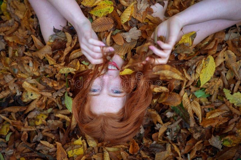 一个逗人喜爱的年轻可爱的女孩的画象,盖用红色和橙色秋季叶子 说谎在秋叶的美丽的性感的妇女 免版税图库摄影