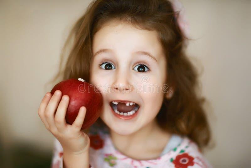 一个逗人喜爱的矮小的卷曲无牙的女孩微笑和拿着一个红色苹果,吃一个红色苹果的一个愉快的婴孩的画象,孩子丢失 库存照片