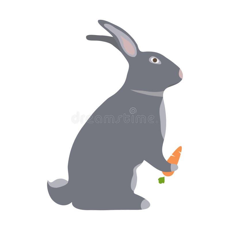 一个野兔用红萝卜 向量例证