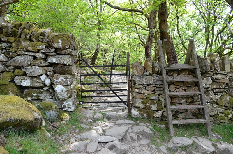 一个金属门通过墙壁和一个窗框在它,带领入一条岩石道路通过森林地 库存照片