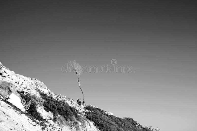一个阴影在沙漠 免版税库存照片