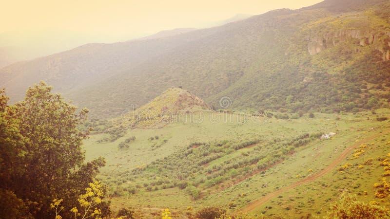 一个领域在山`阿斯福尔` -特莱姆森顶部 免版税库存照片