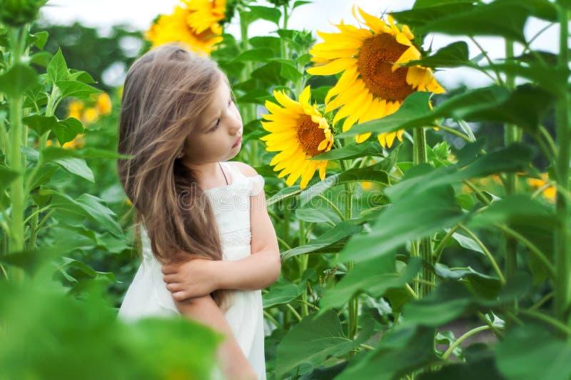 一个领域的美丽的白种人小女孩用向日葵图片