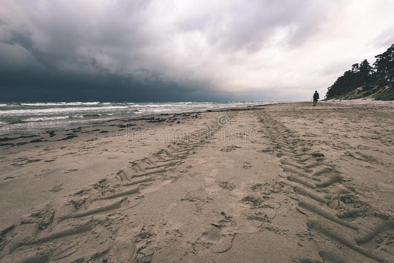 一个风雨如磐的海滩的看法与偏僻的树的早晨- vintag 图库摄影