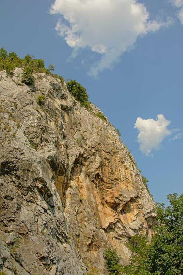一个高Transylvanian山土坎的细节与树的 库存照片