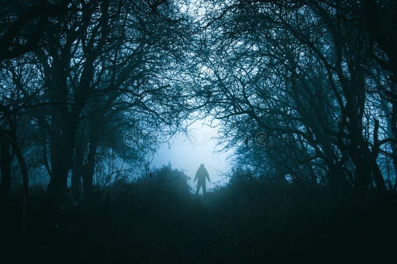 一个鬼的孤立戴头巾图在有黑暗的一个令人毛骨悚然的有薄雾的冬天森林减弱的声音的编辑 库存照片