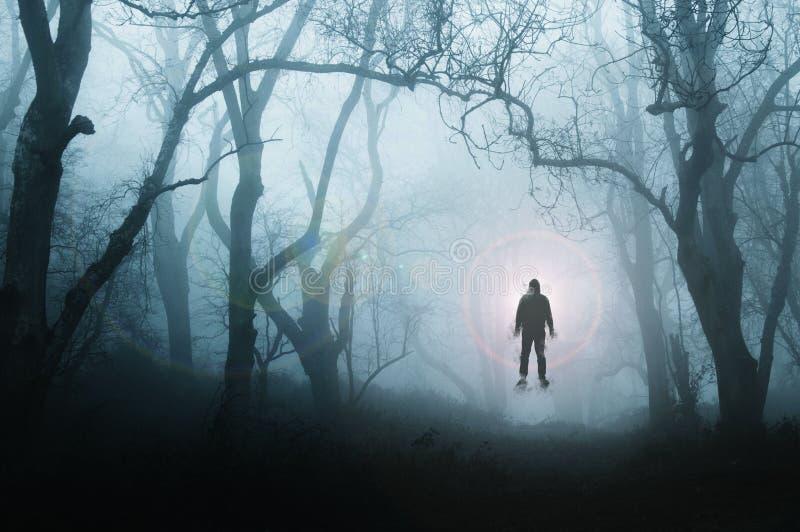 一个鬼,令人毛骨悚然的森林在冬天,当一个人漂浮反对明亮的光,当树现出轮廓由雾 减弱的声音,蓝色 免版税库存照片