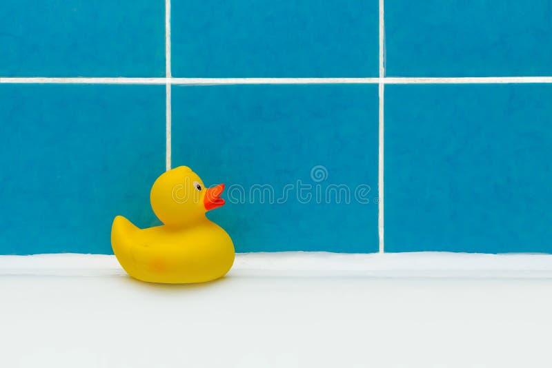 一个鸭子玩具在修理特写镜头以后的一个干净的卫生间里 免版税库存照片