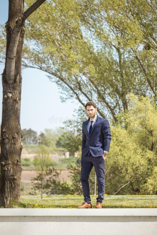 一个年轻人,正式衣裳衣服领带,摆在,看camer 库存照片