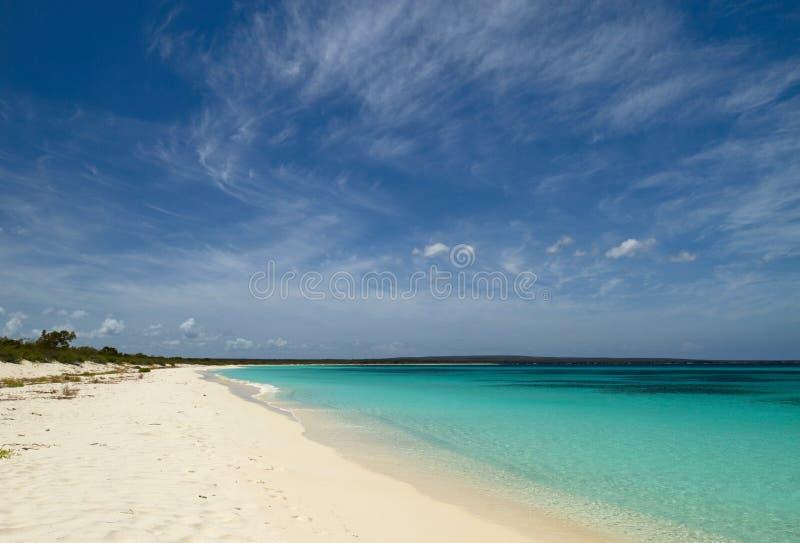 一个离开的海滩,多米尼加共和国 免版税库存照片
