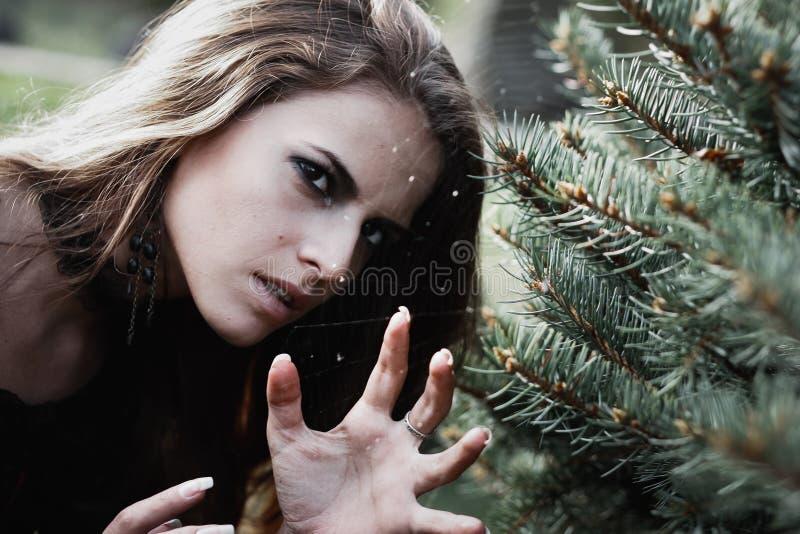 一个黑暗的森林美丽的少妇的万圣夜巫婆巫婆服装的 万圣夜艺术设计 恐怖背景为万圣夜 库存照片