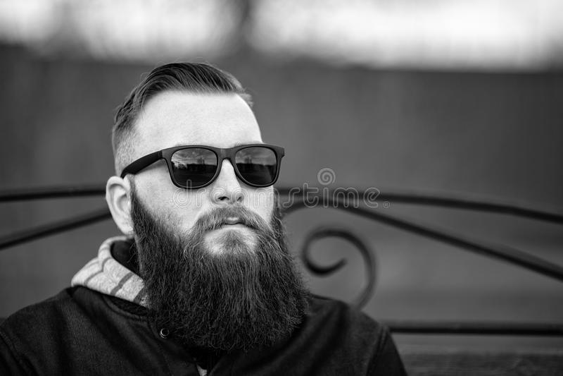 一个年轻残酷人和在太阳镜的时兴的理发的画象有大胡子的 生活方式 免版税库存图片