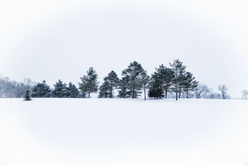 一个冻结的风景 免版税库存照片