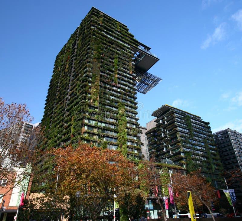 一中央公园让・努维尔,悉尼,澳大利亚 与植物园的现代高层塔帕特里克布朗 库存照片