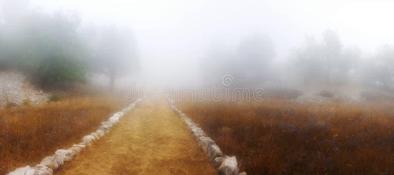 一串足迹通过雾 免版税库存图片