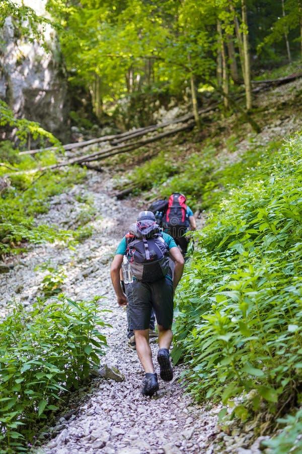 一串陡峭的足迹的背包徒步旅行者 免版税图库摄影