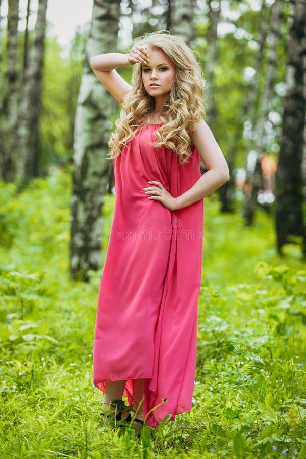 一件夏天礼服的美丽的少女在日落 在森林模型的时尚照片在一件桃红色长的礼服,有流动的卷发的 库存照片