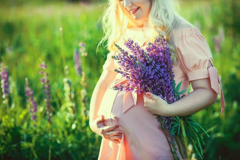 一件桃红色礼服的年轻怀孕的白肤金发的妇女握她的在她圆鼓的腹部的手有紫罗兰色领域花花束的,在中 库存图片