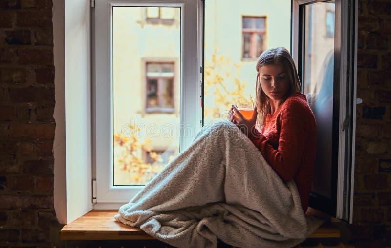 一件温暖的毛线衣的年轻女人用毯子报道了她的腿,放松与一杯汁液,坐窗台 库存图片