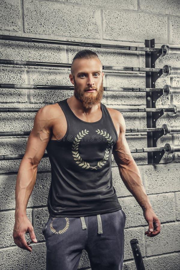 一件灰色T恤杉的有胡子的肌肉人 免版税库存照片
