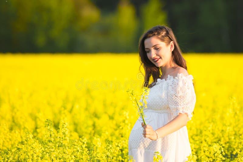 一件白色礼服的怀孕的女孩 美丽的孕妇室外自然画象白色礼服的 图库摄影