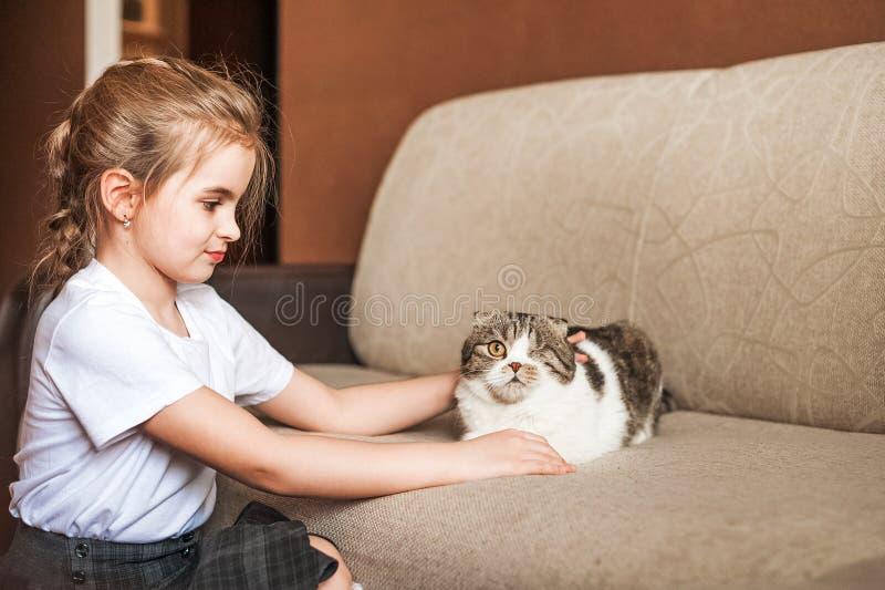 一件白色T恤杉和一只美丽的英国shorthair猫的一个小女孩 没有互联网的比赛,社会网络,小配件 免版税库存图片