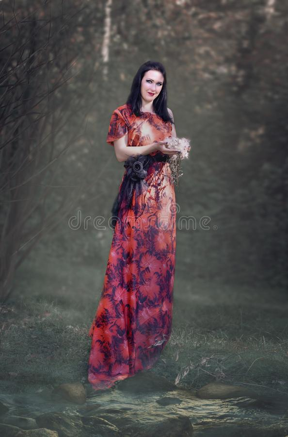 一件红色礼服的画象妇女有皮刺的 免版税图库摄影