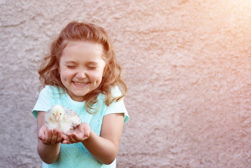 一件蓝色T恤杉的逗人喜爱的女孩有在她的面颊的笑涡的在她的手和半眯着的眼睛上拿着一只鸡以情感和欢欣 库存图片