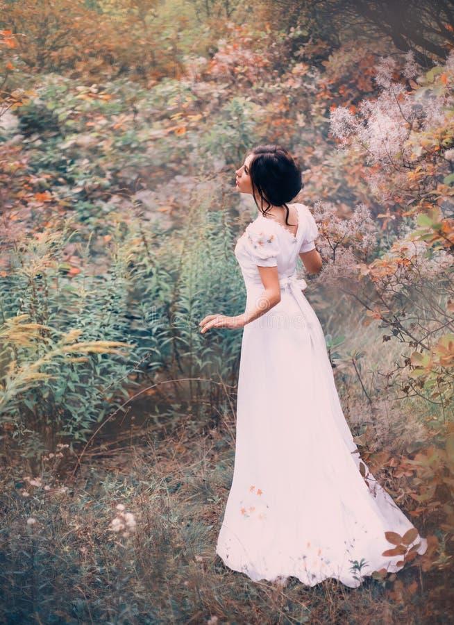 一件长的白色礼服的令人愉快的公主在一个遥远的森林里得到丢失,听噪声和唱歌鸟 免版税库存图片