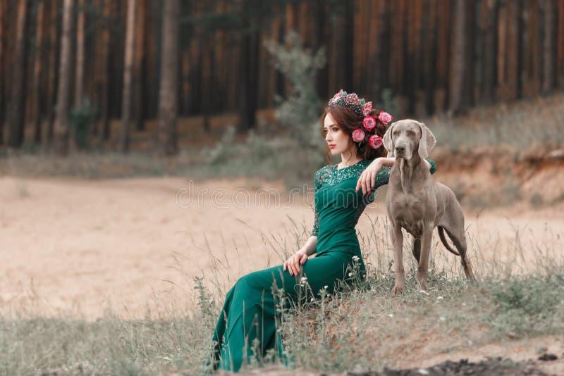 一件鲜绿色礼服和花的一个女孩被编织入她的头发坐森林走Weimaraner的 免版税图库摄影