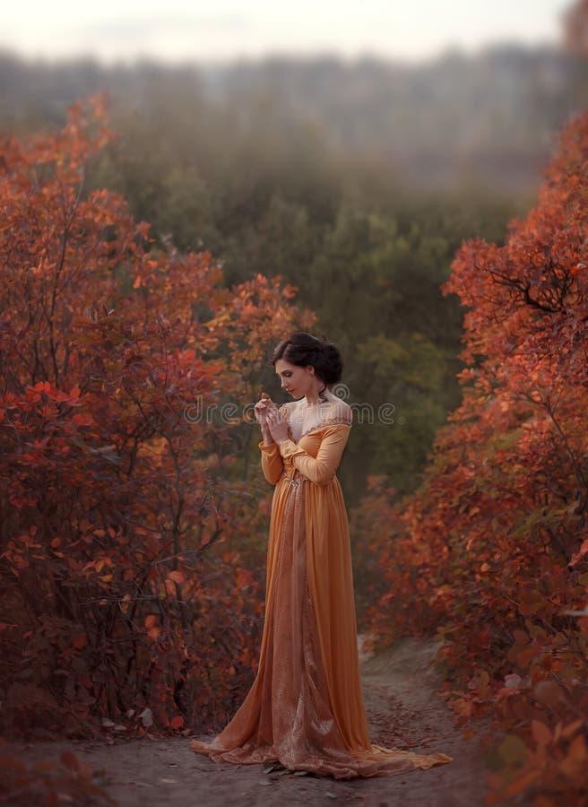一件黄色葡萄酒礼服的公主在新生沿美丽如画的秋天小山走在黄昏 照片 库存图片