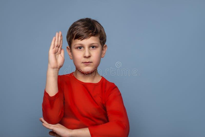 一位严肃的男小学生举了他的手由答复决定问题 免版税库存照片