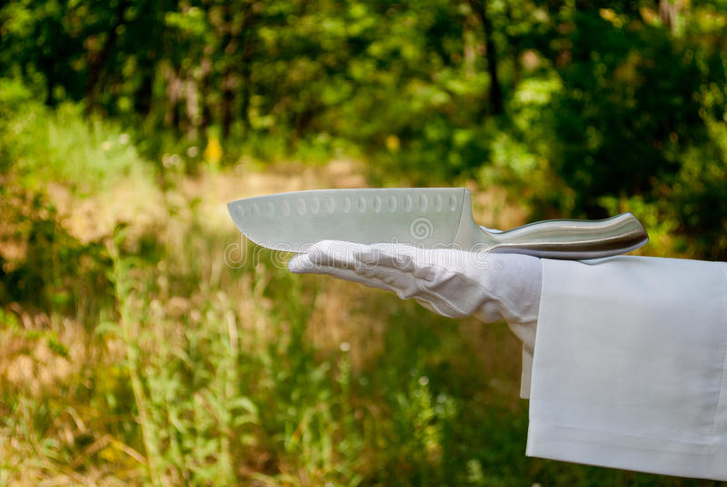 一位侍者的手一副白色手套的拿着在自然的一把金属刀子 免版税库存照片