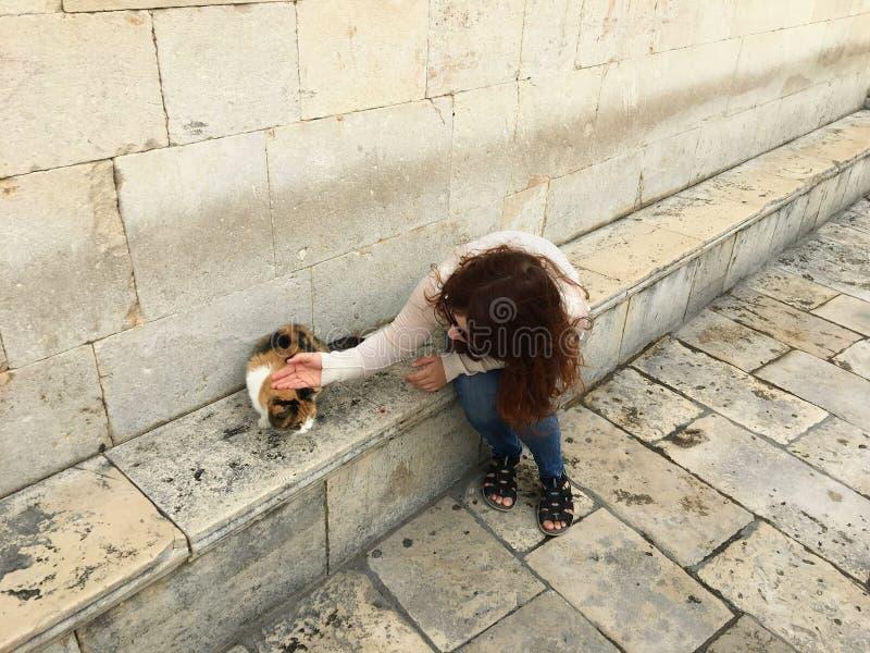 一位年轻的漂亮游客,坐在克罗地亚杜布罗夫尼克街头流浪的流浪猫中, 图库摄影