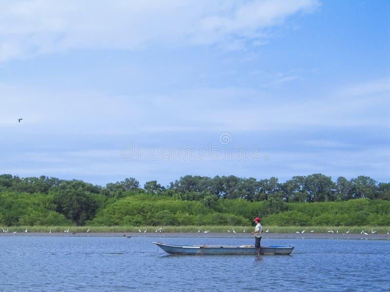 一位渔夫在Unare盐水湖,安索阿特吉州,委内瑞拉,南美洲 库存图片