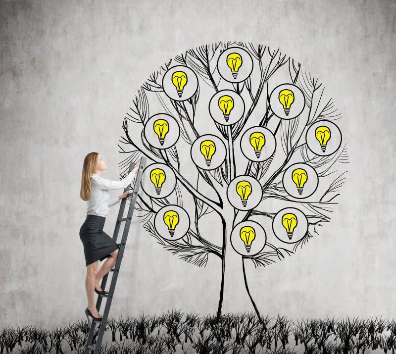 一位美丽的企业家上升到与电灯泡的拉长的树 新的企业想法的概念为开始  具体ba 免版税库存图片