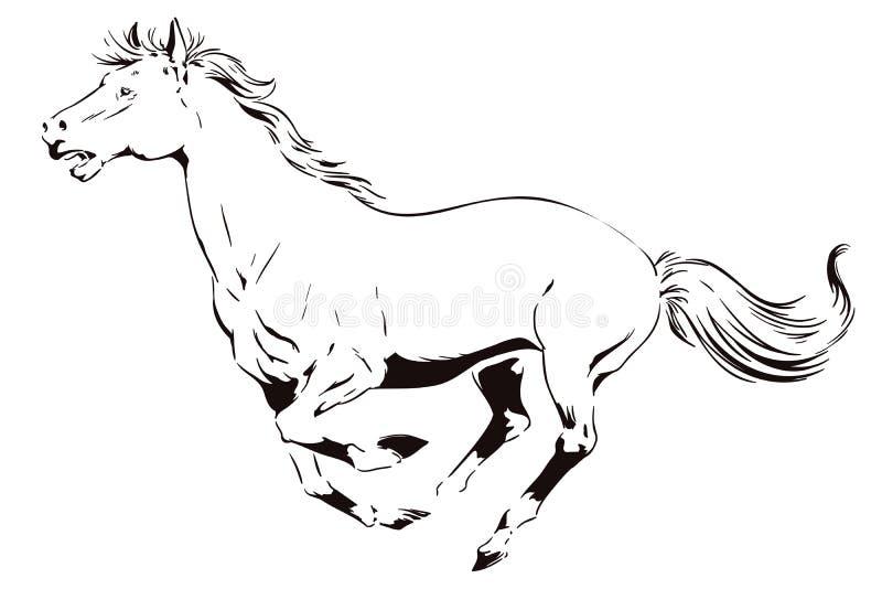 一匹疾驰的马 背景明亮的例证桔子股票 皇族释放例证