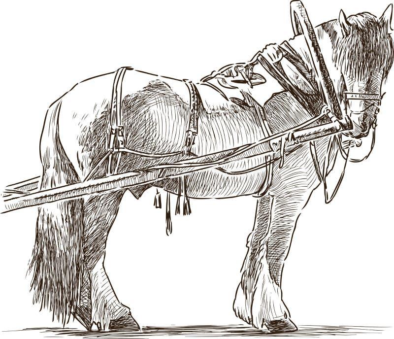 一匹被利用的耕马的剪影 库存例证