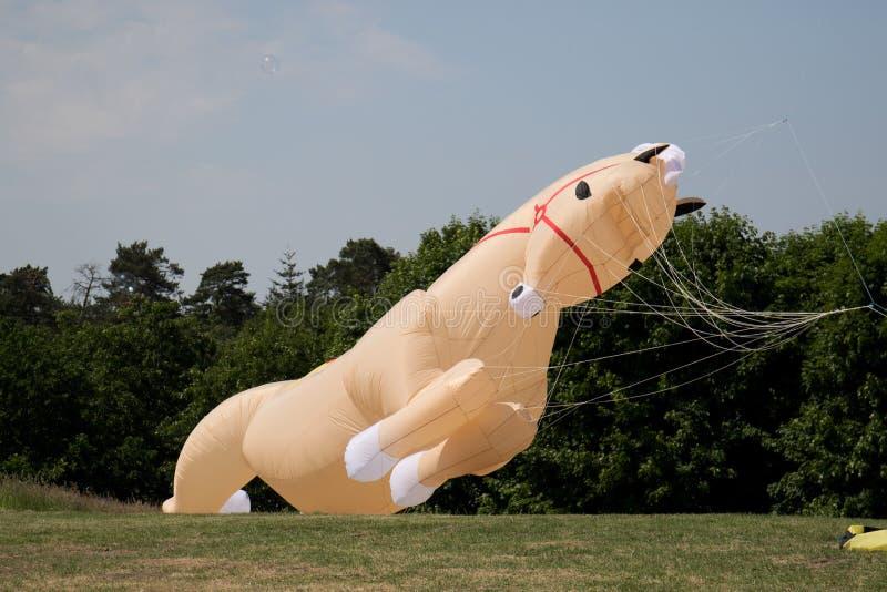 一匹马作为在风筝节日的一只风筝在存贮海geeste德国 库存照片