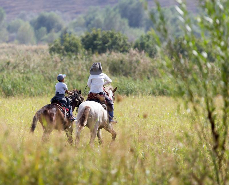 一匹马的两个男孩在自然 免版税库存图片