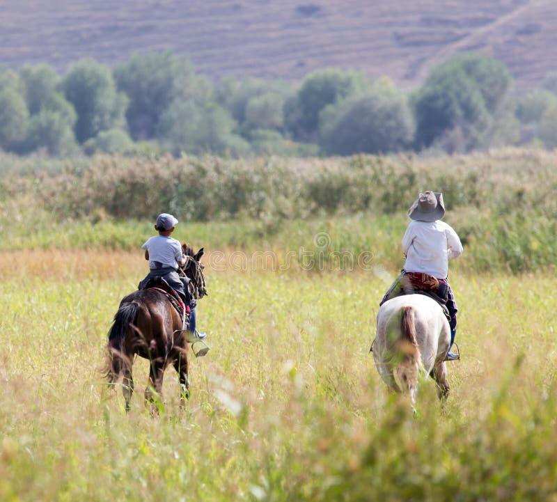 一匹马的两个男孩在自然 图库摄影
