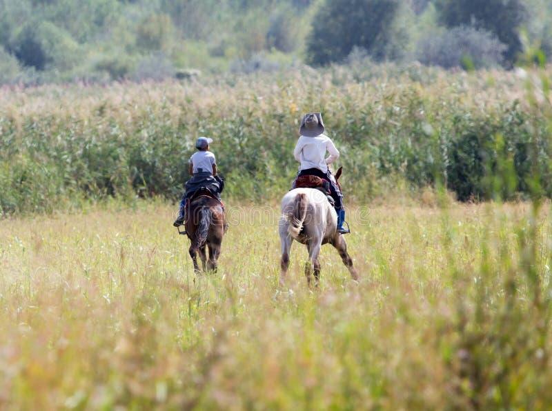 一匹马的两个男孩在自然 库存图片
