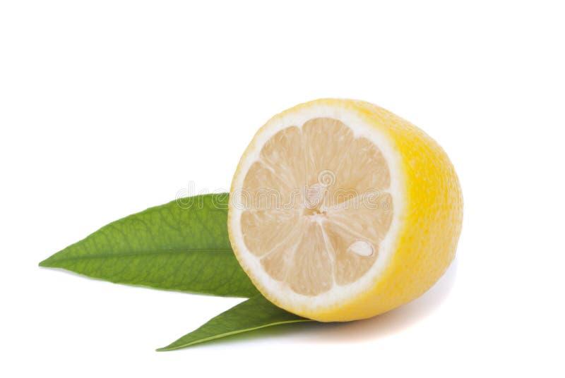 一半与叶子的柠檬。 图库摄影